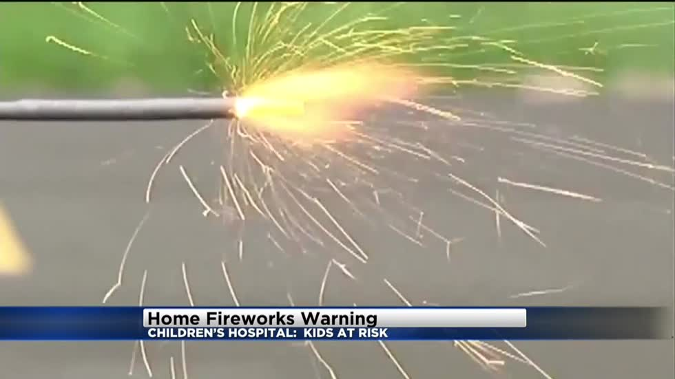 """Leave the fireworks to the professionals: 'Safe Kids' offers tips to keep kids safe during 4th of July celebrations"