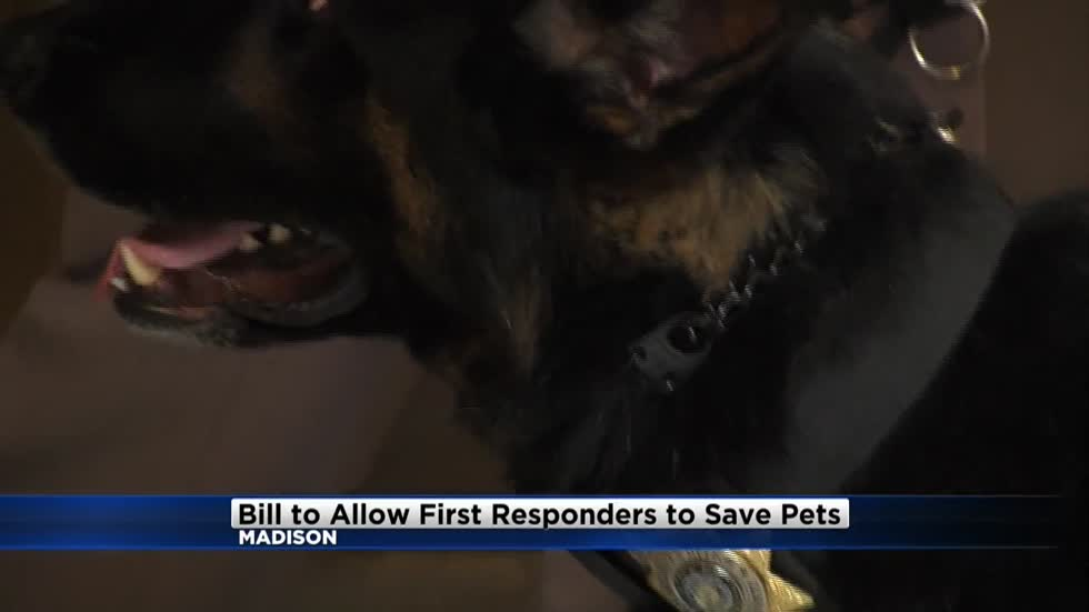 State lawmakers considering bill that would allow first responders to save pets
