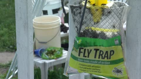 Cudahy man's messy habits lead to pest problem, fly infestation in neighborhood