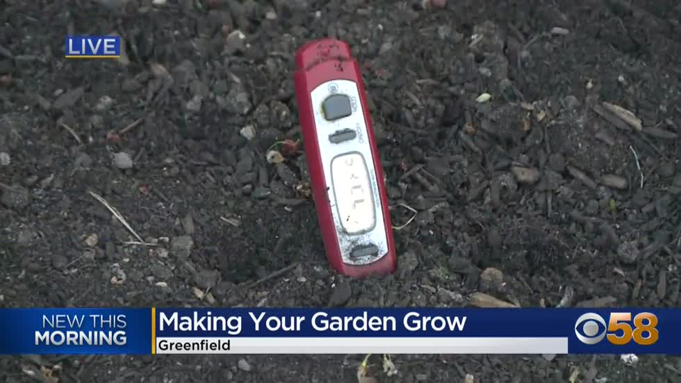 Let your spring garden grow, the right way