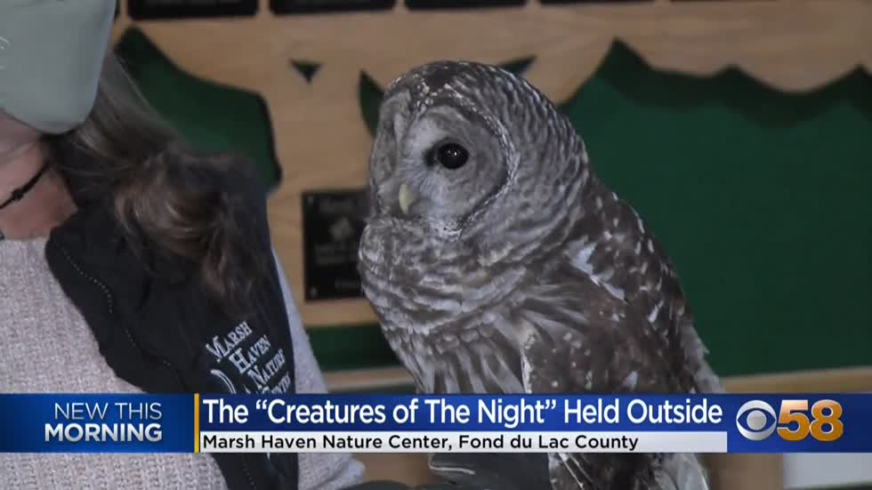 Opt for the creepy crawlies at Waupun's Marsh Haven Nature...