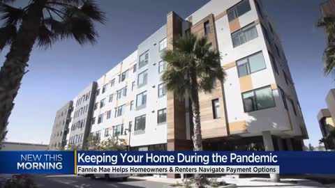 Experts offer advice for people navigating homeowner, renters...