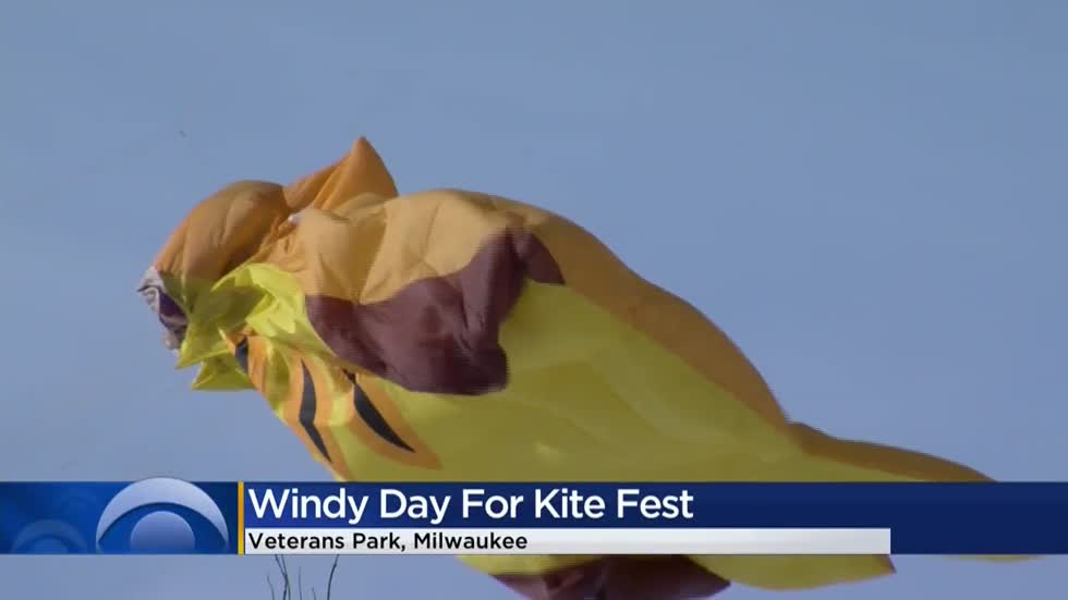 Families take part in New Year's Day kite festival at Veterans Park