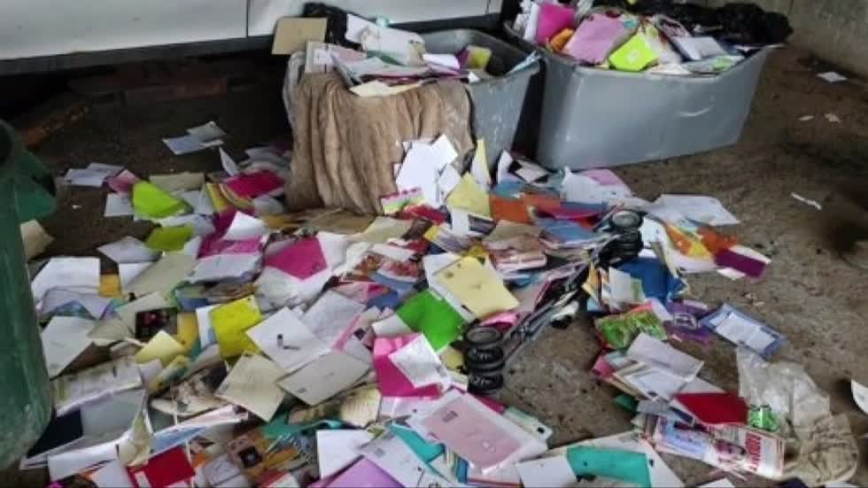Former USPS mail carrier pleads guilty to stealing thousands of greeting cards filled with gift cards, money