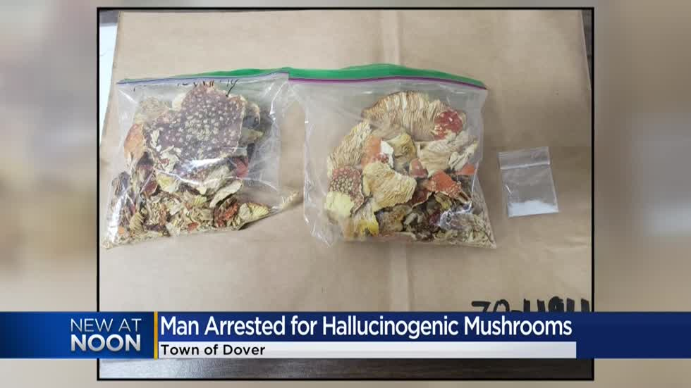 Man arrested for possession of hallucinogenic mushrooms, crystal meth in Racine County