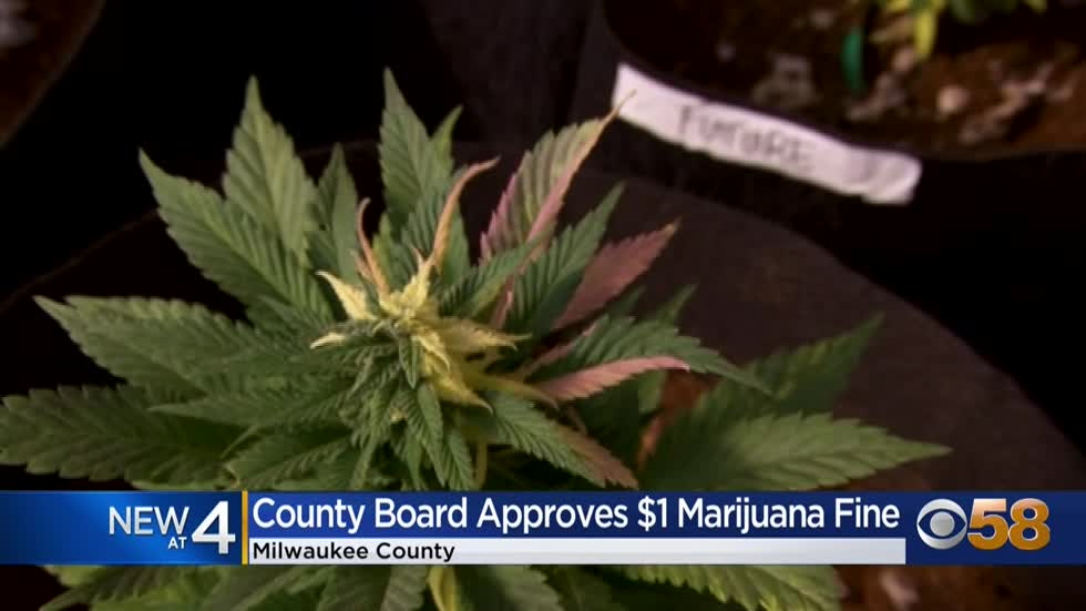 Marijuana possession fine reduced to $1 in Milwaukee County