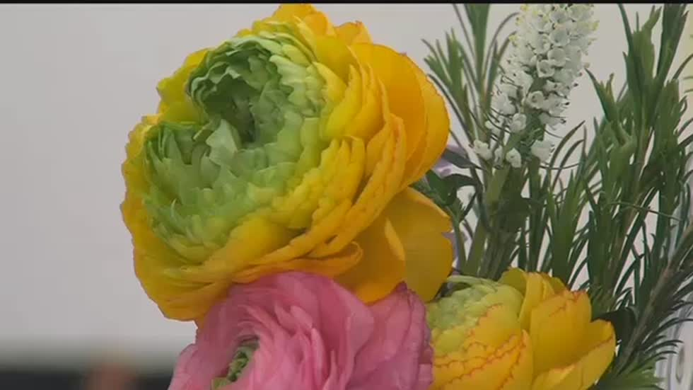 Milwaukee Art Museum's Art in Bloom attracts large crowds