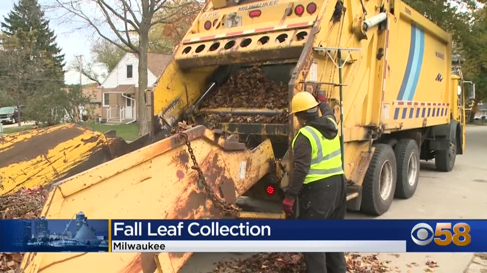 ' Milwaukee DPW leaf collection underway