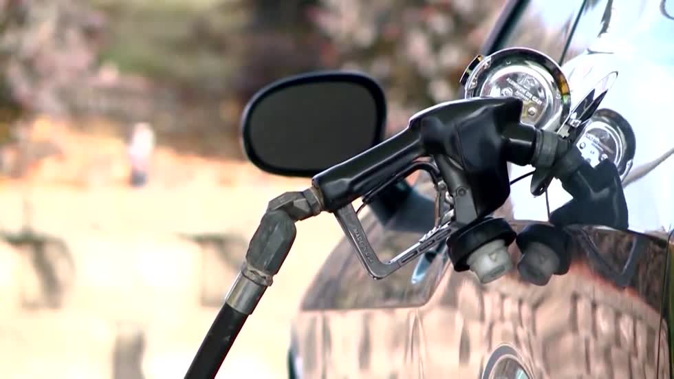 Polar Vortex triggers drop in gas prices