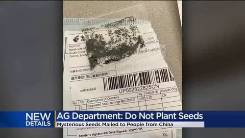 Wisconsin residents receive packages of unsolicited seeds