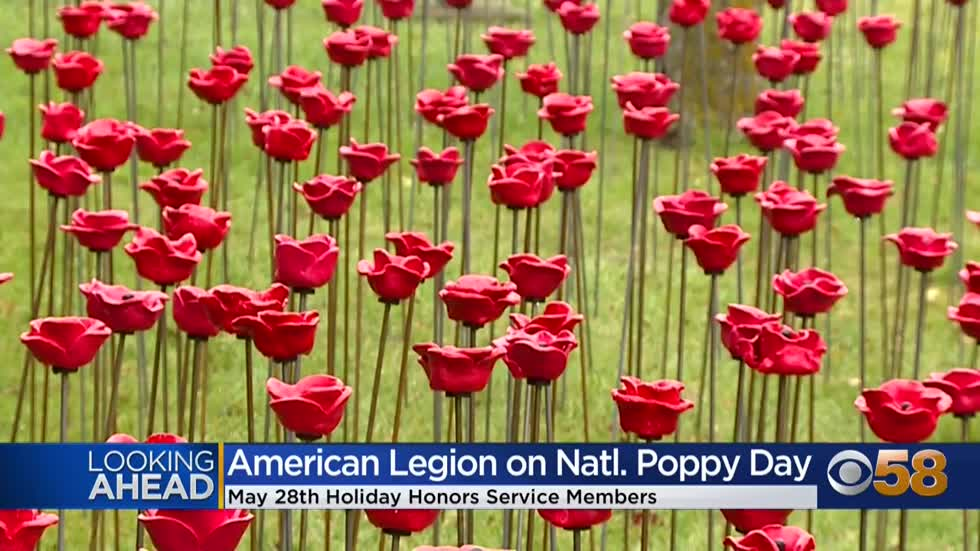 National Poppy Day on May 28 honors fallen veterans