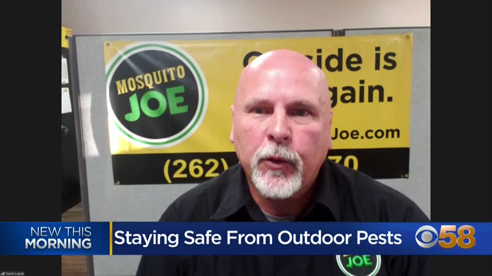 Local pest control expect offers tips for dealing with outdoor pests while enjoying fall activities