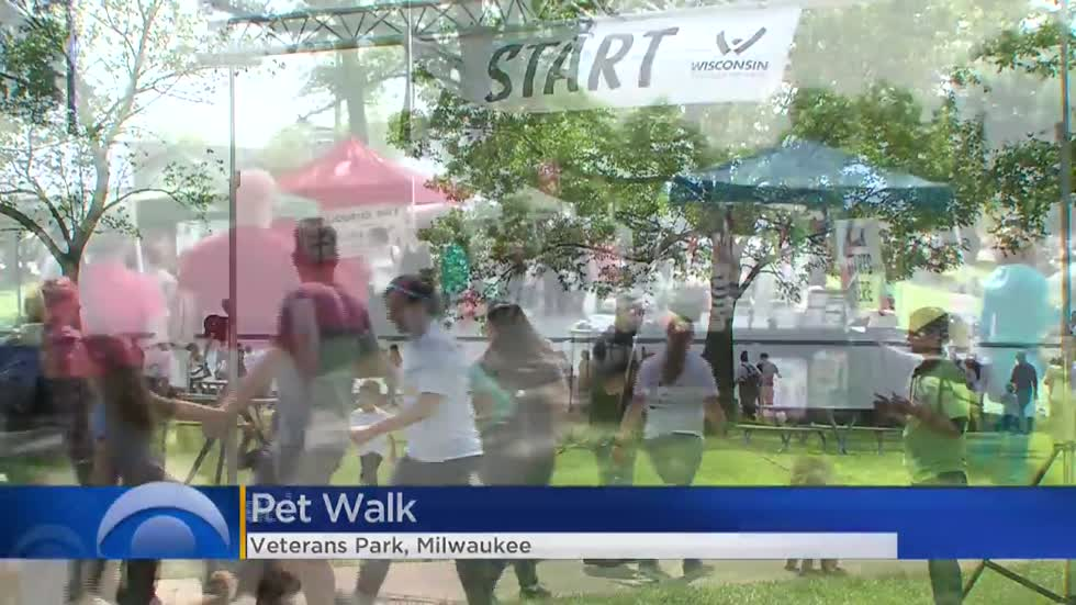 Thousands of dogs, owners fill Veterans Park for 7th annual Pet Walk