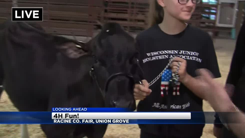 Racine County fair kicks off with animals, rides, tractors, & 4-H fun
