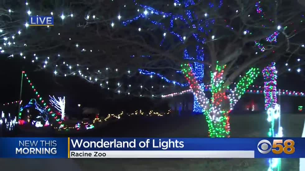 Wonderland of Lights brightens the path for some festive fun...