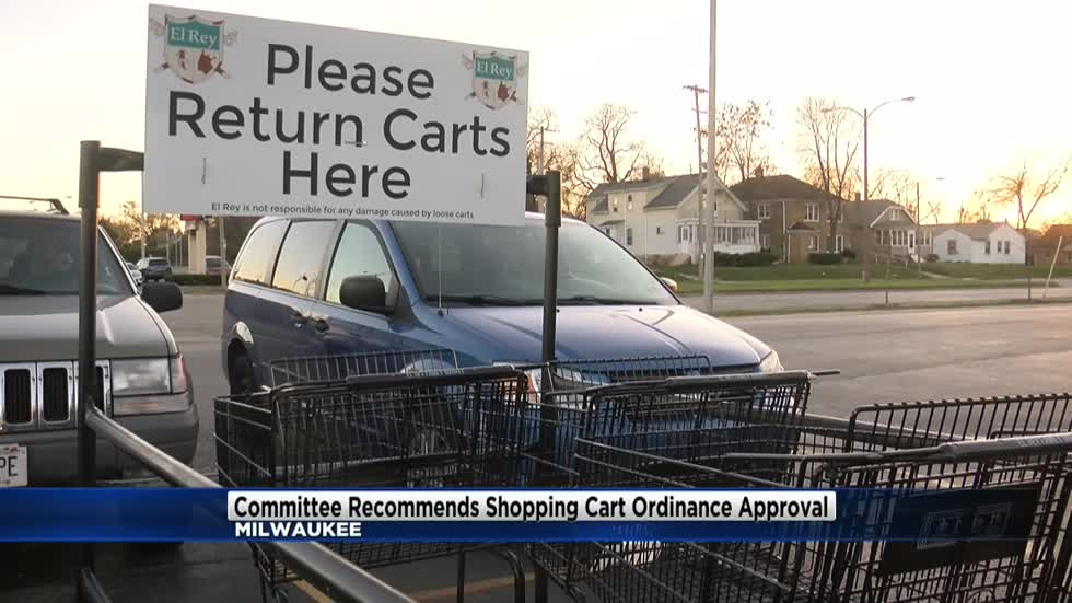 Committee recommends shopping cart ordinance approval