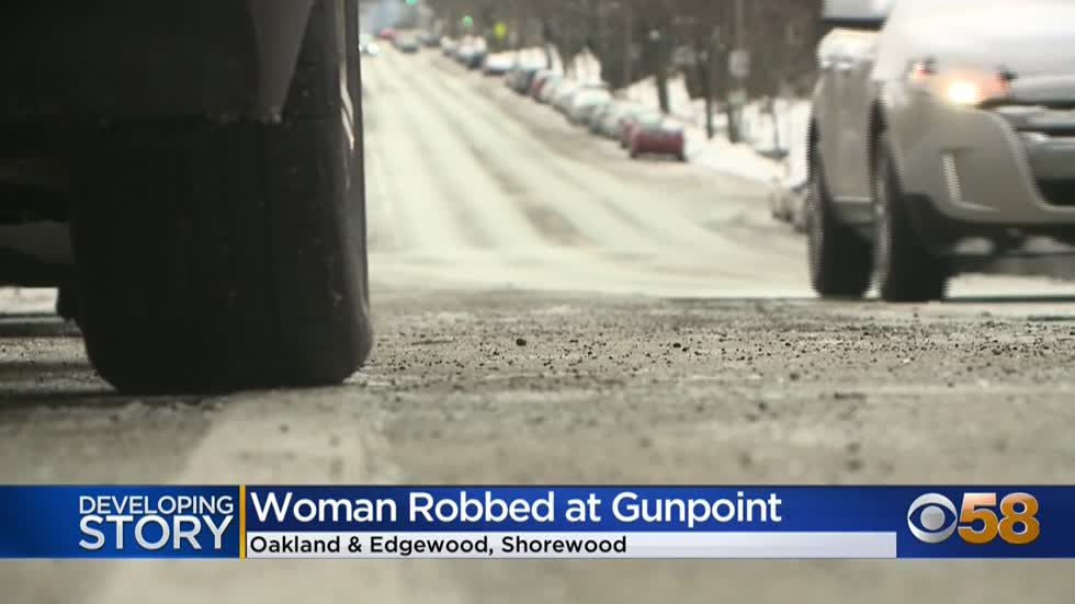 Woman robbed at gunpoint while brushing snow off car near Oakland...