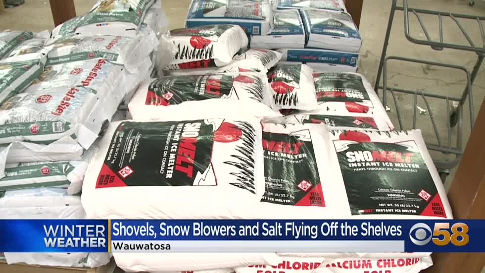 Ace Hardware employees say snow blower sales are up