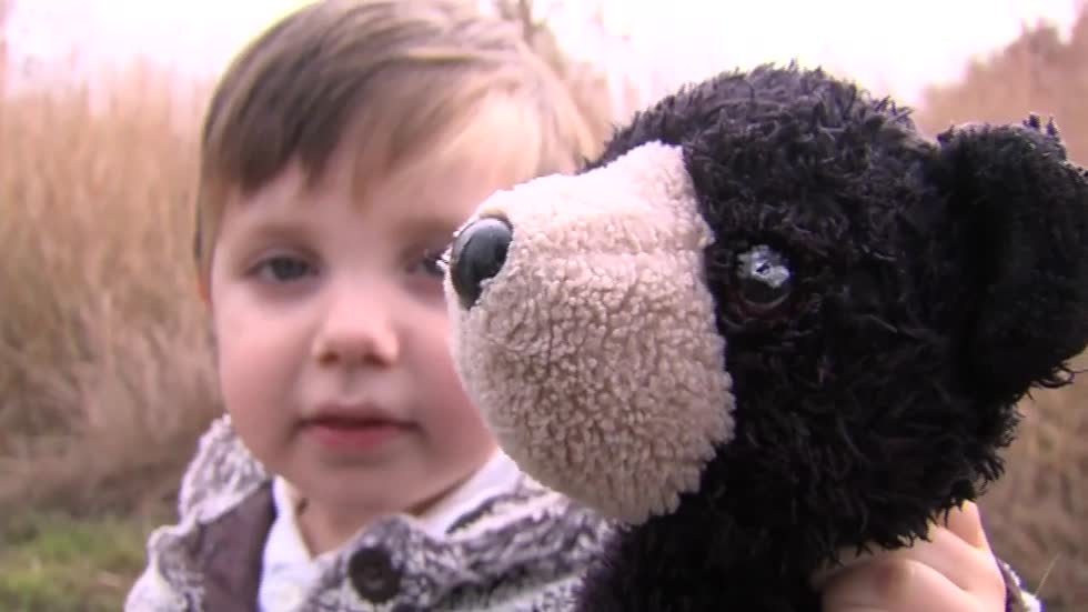 Stranger helps lost teddy bear on an epic adventure home to 2-year old boy