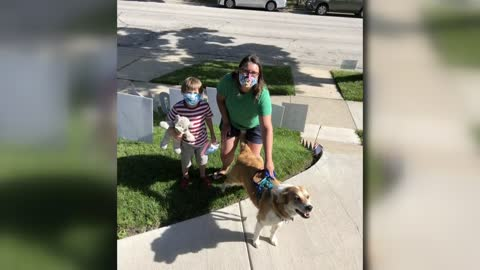 Wauwatosa child surprised with 'dog parade' birthday