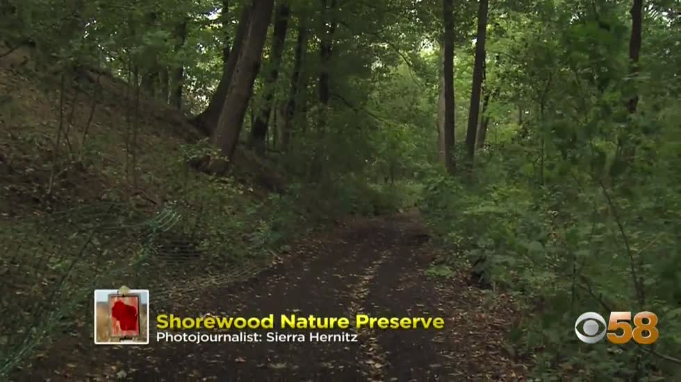 Moment in Wisconsin: Shorewood Nature Preserve