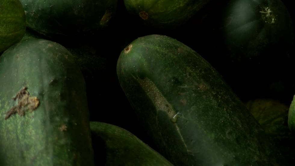 Company working with Wisconsin farmers to sell more 'ugly' produce