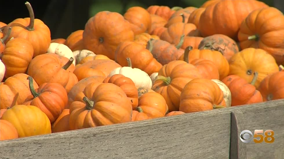 Traditional fall activities return with changes for 2020