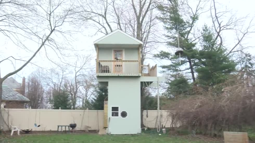 Kenosha couple forced to either rebuild or tear down treehouse Airbnb