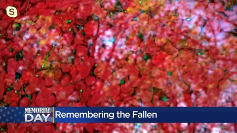 Pay tribute to the fallen with a virtual poppy