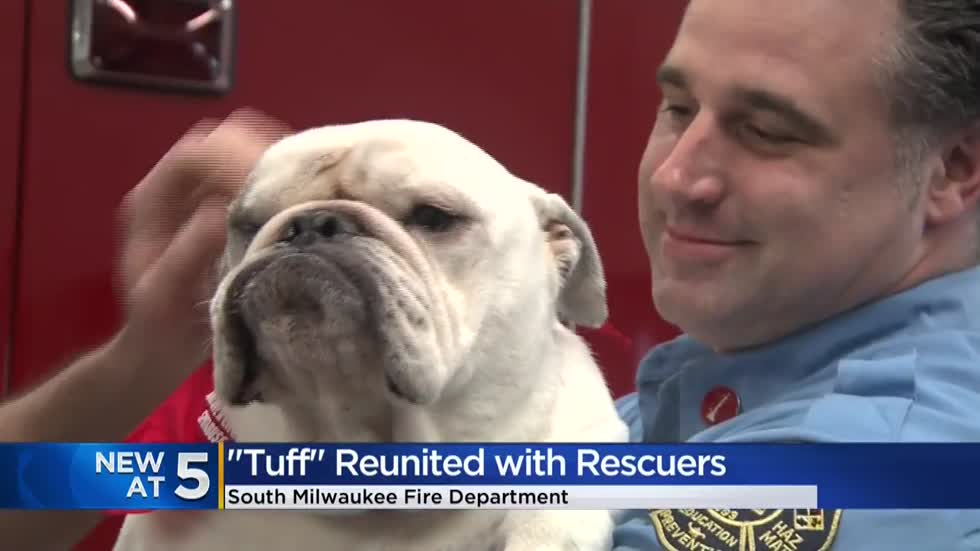 South Milwaukee firefighters reunite with dog rescued from Lake Michigan ice shelf