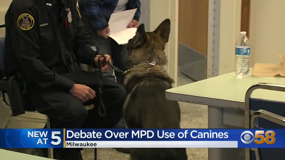 Acting police chief 'disturbed' by comments from alderman about Nazi Germany during debate about K9s