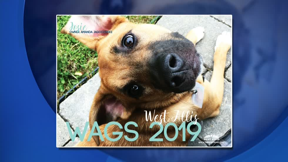 West Allis dogs featured in new calendar to raise money for dog park