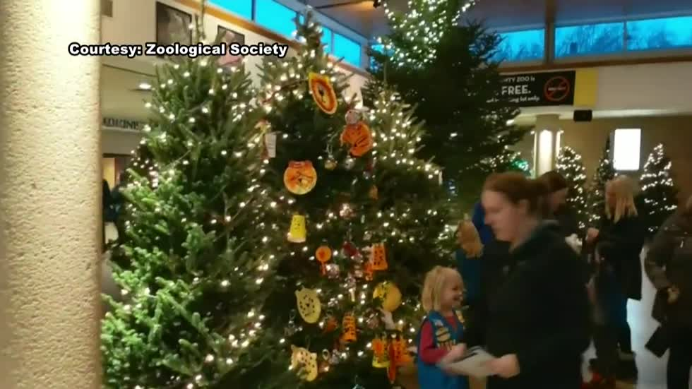 "Youth groups decorate trees for Milwaukee County Zoo's ""Fantastic Forest"""