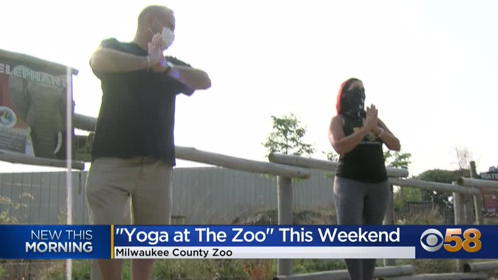 Strike a yoga pose at the Milwaukee County Zoo the next few Saturdays
