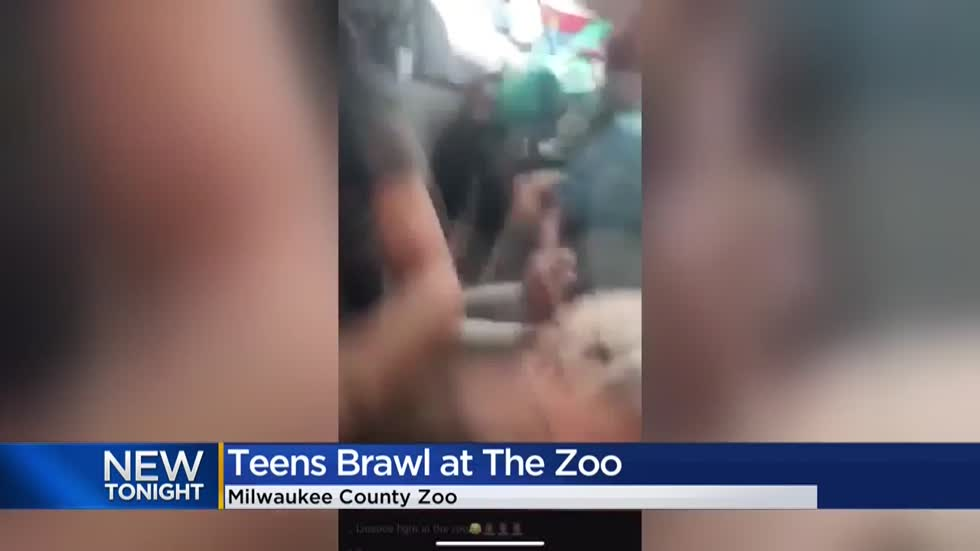 Fight between group of juveniles breaks out at Milwaukee County Zoo