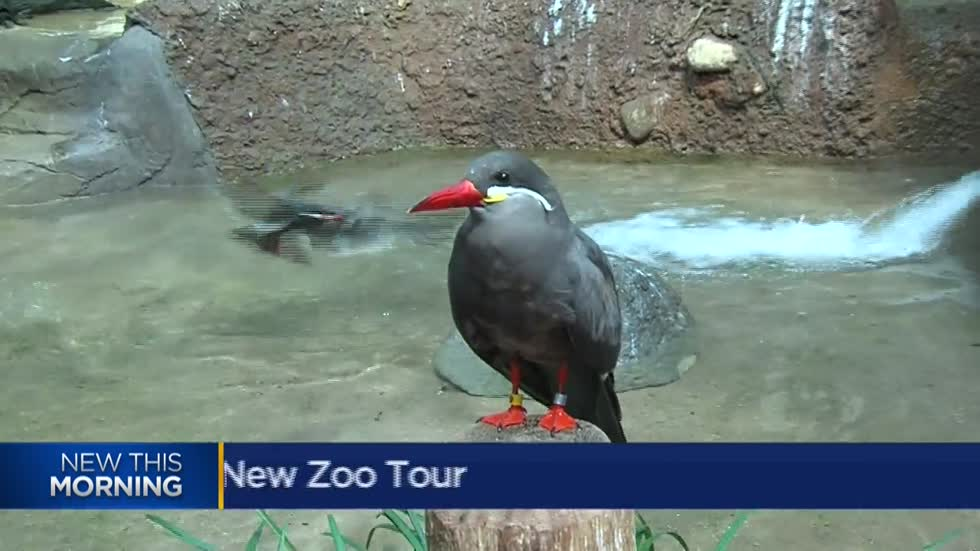 Milwaukee County Zoo offering animal encounter tours