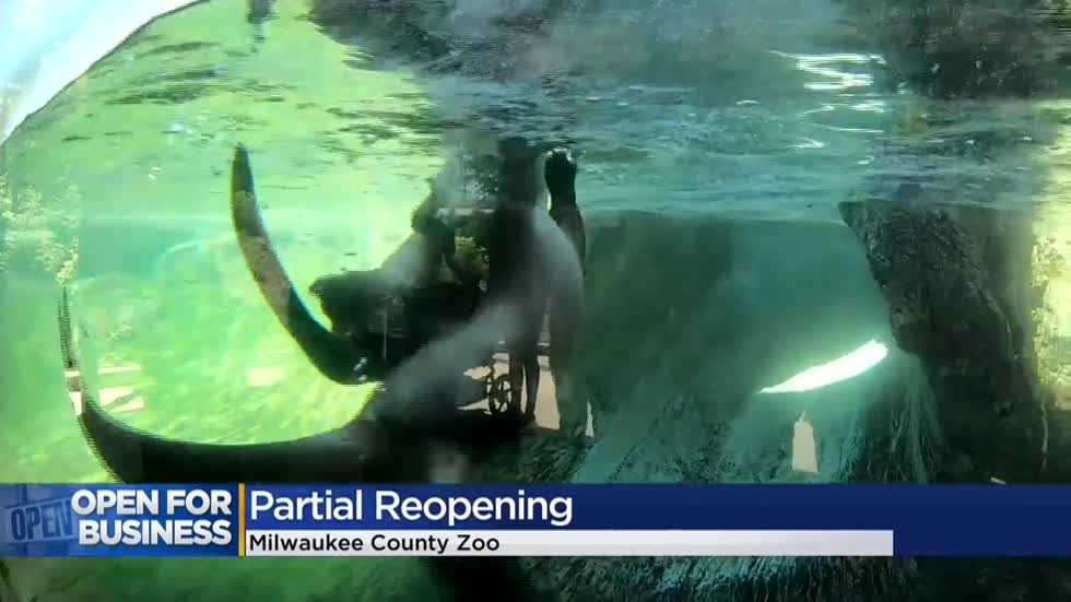 'Stir crazy' families celebrate reopening of Milwaukee County Zoo