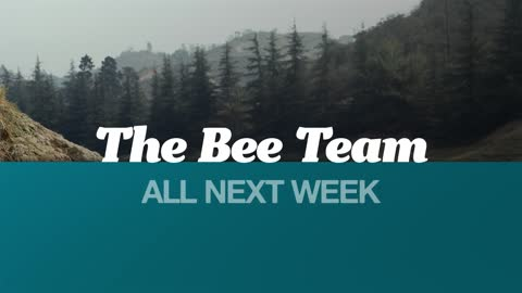 Next week on The Month of Mayberry: The ''Bee Team''