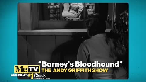 Andy and Barney's Non-Verbal Communication in ''Barney's Bloodhound''