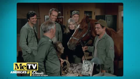 Col. Potter gets his beloved horse, Sophie