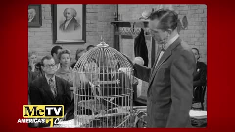 Mel Blanc shows up on Perry Mason as a parrot!