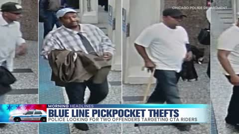 CPD Searching for CTA Blue Line Pickpockets